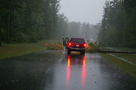 Tree down from Hurricane Isabel on subdivision entrance road off Robius Road