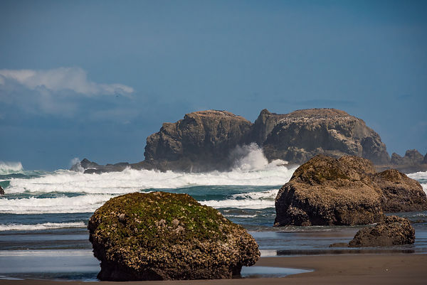 Oregon_Coast-30