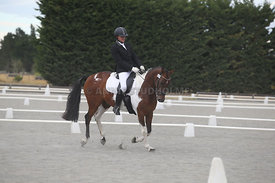 Canty_Dressage_Champs_071214_008