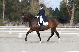SI_Festival_of_Dressage_300115_Level_9_SICF_0445