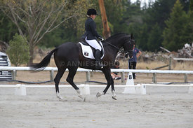 SI_Festival_of_Dressage_310115_Level_5_Champ_0808