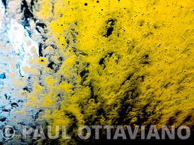 Fried Egg | Paul Ottaviano Photography