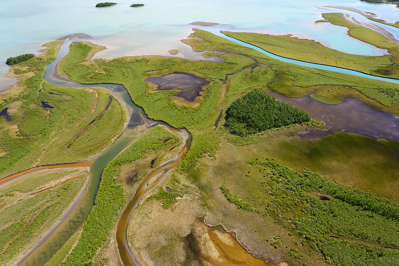 Aerial view of the Rapa river delta as it flows into Lake Laitaure, Sarek National Park, Greater Laponia Rewilding Area, Lapland, Norrbotten, Sweden, June 2013.