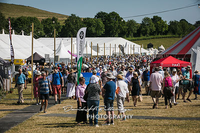 Large crowds enjoying the Festival in the summer sunshine
