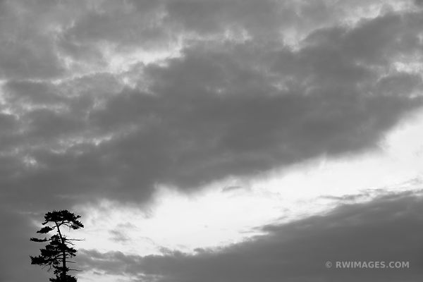 TREE AND CLOUDS LAKE LUZERNE ADIRONDACK MOUNTAINS BLACK AND WHITE