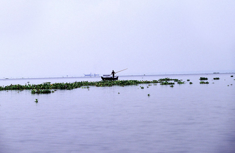 India - Kerala - A boat on the Backwaters of Ayamenam
