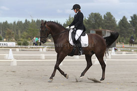 SI_Festival_of_Dressage_310115_Level_4_Champ_0590