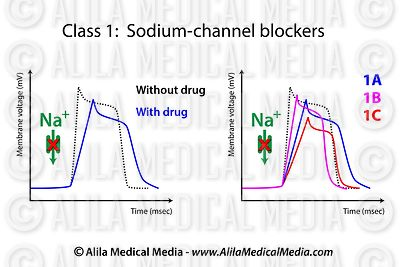 Action of sodium-channel blockers