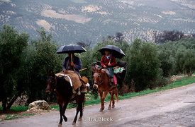 two men with umbrellas on mules