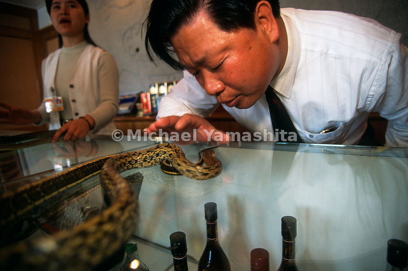 Chin Lung Fei, owner of the Flying Dragon Amusement Park. The park promotes love of snakes - sells snake products - food, medicine, clothes, etc..Panyu, China