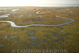 Russell Sage Foundation Marsh Island State Wildlife Refuge in Southern Louisiana.