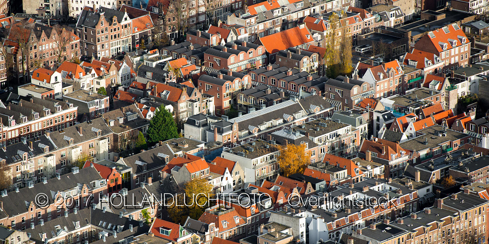 Amsterdam is the Capital and Most Populous of the Kingdom of the Netherlands.