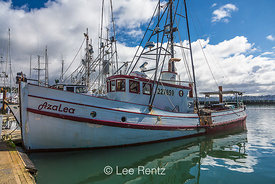 Commercial Fishing Vessels at the Port of Newport in Oregon
