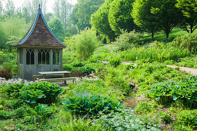 Summerhouse surrounded by bog and streamside planting including hostas, candelabra primulas and yellow flag irises with avenue of fastigiate hornbeams above. The Old Rectory, Netherbury, Dorset, UK