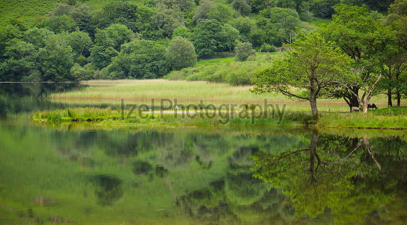 The mountain landscape reflected in the still water of Brothers Water in the Lake District, Cumbria.