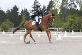 SI_Festival_of_Dressage_310115_Level_8_MFS_1139