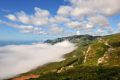 Arrabida Natural Park in a foggy morning. Portugal