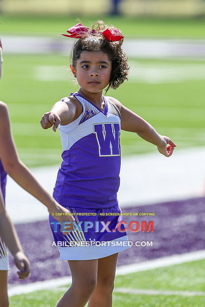 10-21-17_FB_Jr_PW_Wylie_Purple_v_Titans_MW00490