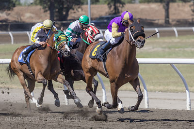 Race six, Sacramento card at the California State Fair
