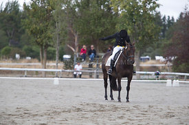 SI_Festival_of_Dressage_300115_Level_6_NCF_0156