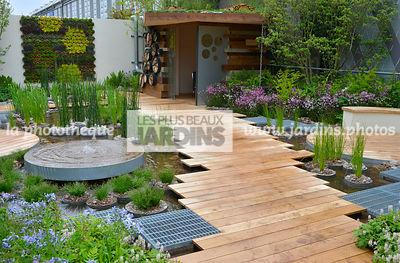 La Phototh Que Les Plus Beaux Jardins Jardin Cologique Jardin Aquatique Iris Pseudacorus