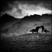 Duel of horses in the wild, Iceland 2015 © Laurent Baheux