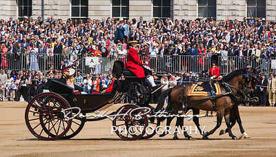 Trooping_the_Colour_8700