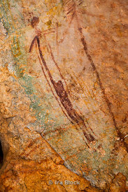 Bradshaw rock paintings found on Jar Island in the north-west Kimberley region of Western Australia.  The rock art is referred to and known by many different Aboriginal names, the most common of which are Gwion Gwion