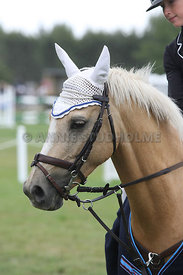 NZ_Nats_090214_1m10_pony_champ_0859