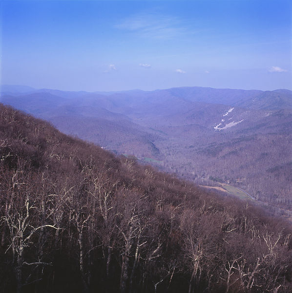 058-Blue_Ridge_D145245_Blue_Ridge_in_Early_Spring_058_Preview