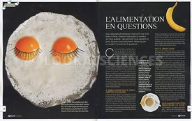 L'alimentation en question