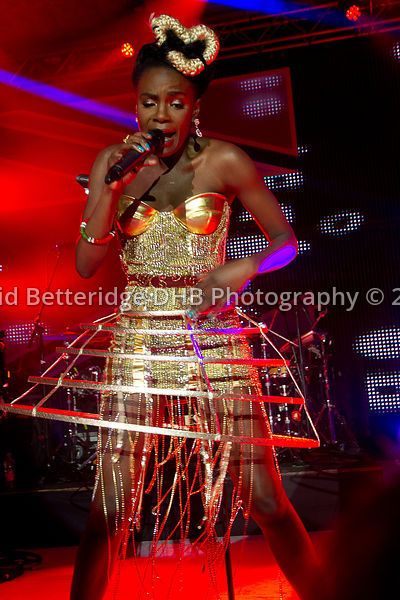 British_Olympic_Ball_2012-851
