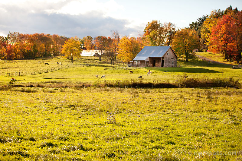 WESTERN MASSACHUSETTS RURAL NEW ENGLAND