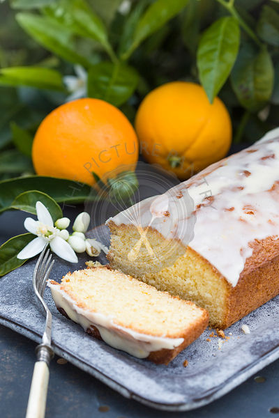 orange drizzle cake on garden metal table, with oranges and orange blossom, with orange tree in the background.