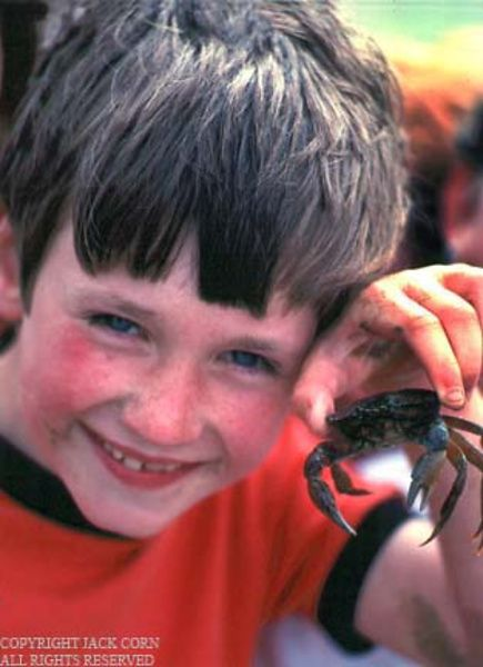 England, Cleesthorpes, boy with crab