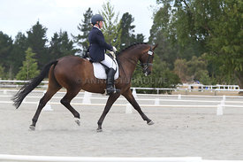 SI_Festival_of_Dressage_310115_Level_8_MFS_1126