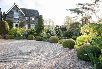 Pavement maze created with stone setts in gravel in the driveway, surrounded by clipped yew spheres and other shrubs. York Gate Garden, Adel, Leeds, Yorkshire