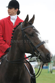 NZ_Nats_090214_1m10_pony_champ_0860