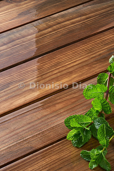 Wooden background with mint branch.