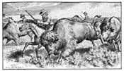 Oregon Trail pioneers hunt buffalo