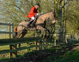Robert Medcalf jumping a hunt jump in Pickwell