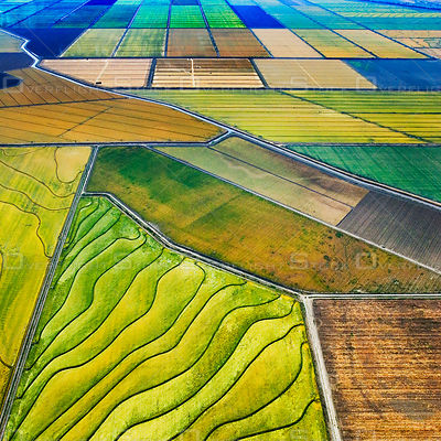 Sacramento Valley Agriculture California
