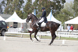 SI_Festival_of_Dressage_310115_Level_6_7_MFS_0623