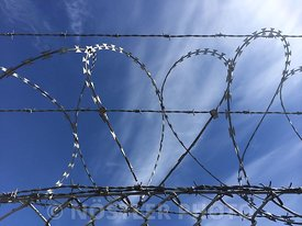 Heart shaped barbed wire fence