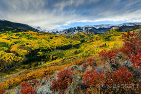 Fall Colors | Aspen, CO