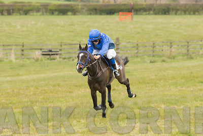 Ninfield Millionaire's Splendour finishing second in Pony Race at Balcormo point-to-point on 29Apr2017.