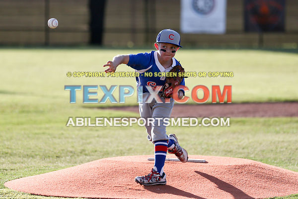 06-05-17_BB_LL_Albany_Raiders_v_Jim_Ned_Cubs_TS-274