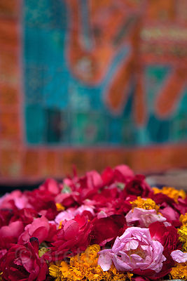 Flowers for sale at the entrance to a temple in Pushkar, Rajasthan, India. They are used as offerings.
