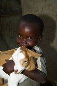 Young African boy holding baby goat in arms, Mbale, Uganda Africa