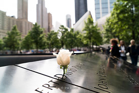 A worker places a rose on the the birthday of one of the victims from 9/11 attack at the 9/11 memorial pools in World Trade Center.